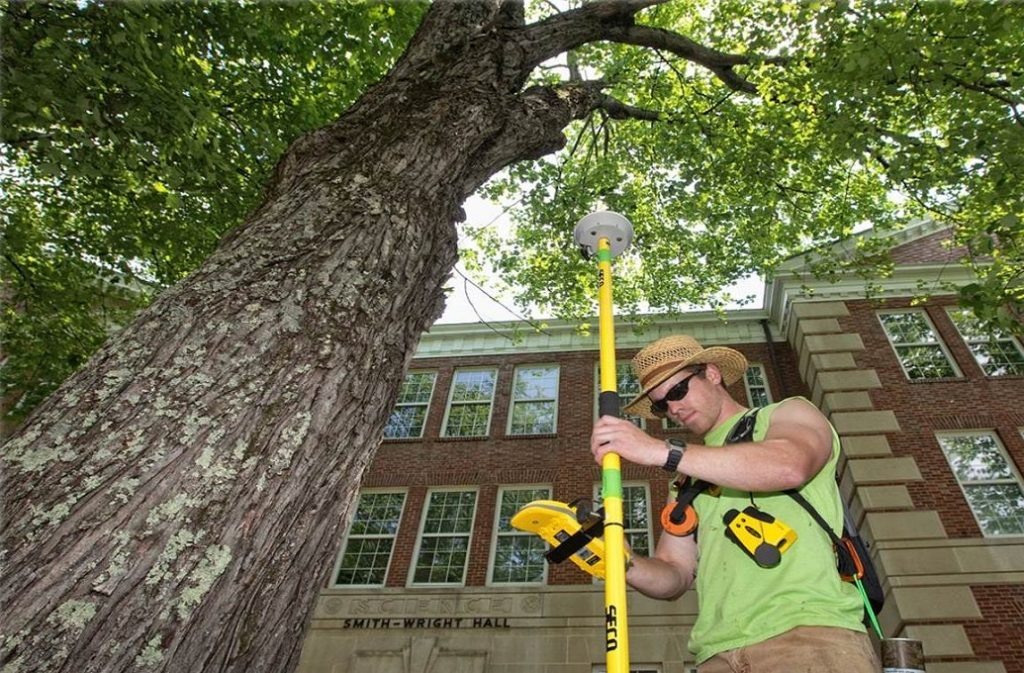 Arborist Consultations-Greensboro Tree Trimming and Stump Grinding Services-We Offer Tree Trimming Services, Tree Removal, Tree Pruning, Tree Cutting, Residential and Commercial Tree Trimming Services, Storm Damage, Emergency Tree Removal, Land Clearing, Tree Companies, Tree Care Service, Stump Grinding, and we're the Best Tree Trimming Company Near You Guaranteed!
