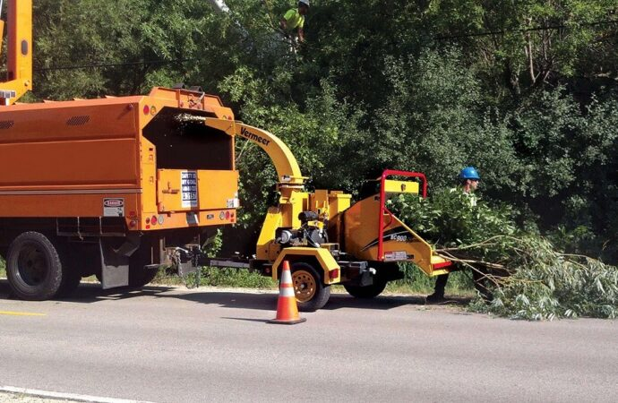 Commercial Tree Services-Greensboro Tree Trimming and Stump Grinding Services-We Offer Tree Trimming Services, Tree Removal, Tree Pruning, Tree Cutting, Residential and Commercial Tree Trimming Services, Storm Damage, Emergency Tree Removal, Land Clearing, Tree Companies, Tree Care Service, Stump Grinding, and we're the Best Tree Trimming Company Near You Guaranteed!