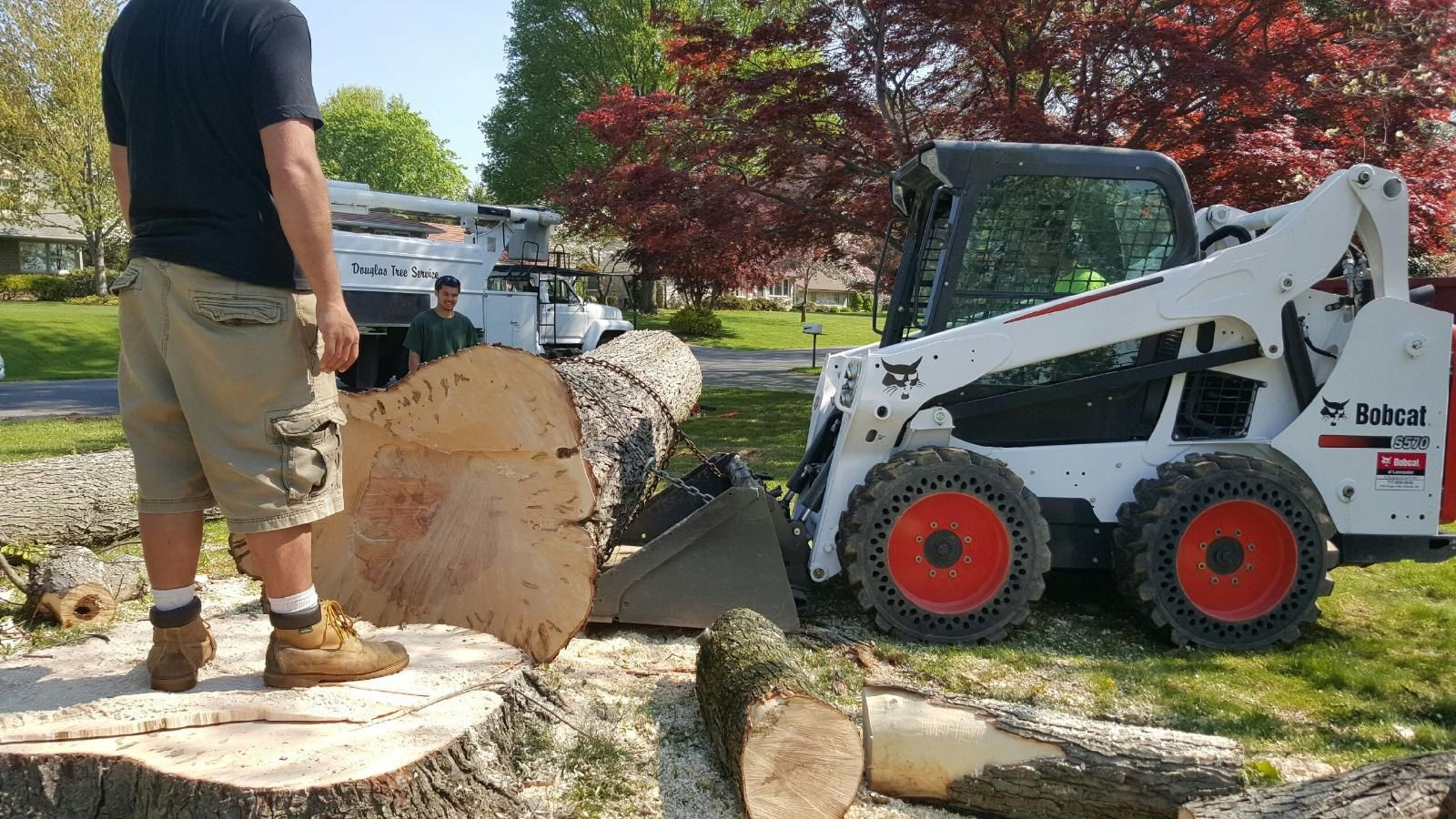Pleasant Garden-Greensboro Tree Trimming and Stump Grinding Services-We Offer Tree Trimming Services, Tree Removal, Tree Pruning, Tree Cutting, Residential and Commercial Tree Trimming Services, Storm Damage, Emergency Tree Removal, Land Clearing, Tree Companies, Tree Care Service, Stump Grinding, and we're the Best Tree Trimming Company Near You Guaranteed!